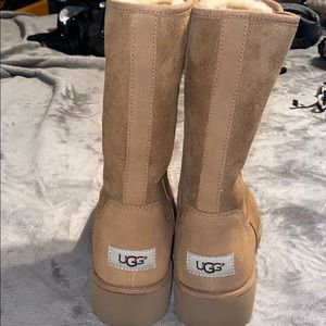 Brand New never worn Ugg's